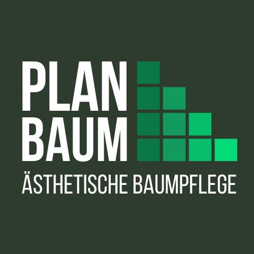 Ästhetische Baumpflege München